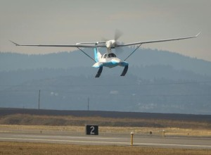 Ski Gull First Takeoff